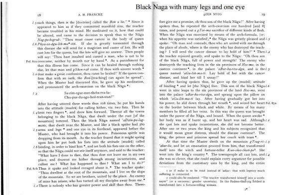 Black Naga.JPG